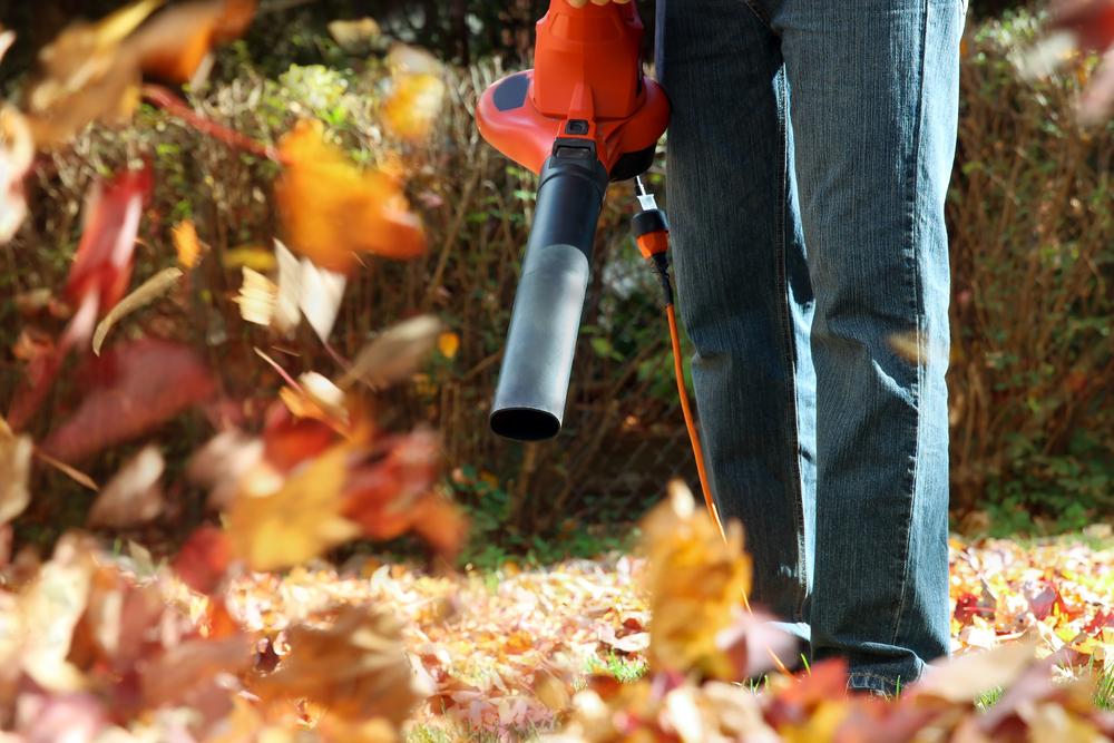 Laubbläser, Herbst