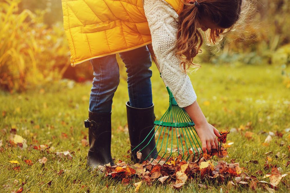 Laub, Herbst, Gartenarbeit